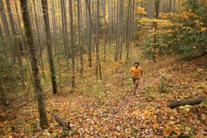 Man running in the woods in autumn
